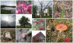 11 Фотографий природы Беларуси
