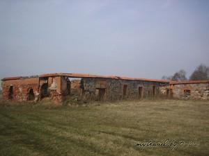 Фотографии остатков построек усадьбы в деревне Дворище