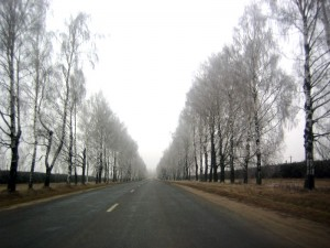 Пора в дорогу
