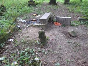 Старое каталитическое кладбище в городе Лида (Быдло отдыхает на кладбище)