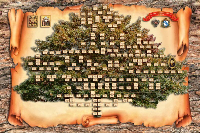 Скачать генеалогическое дерево шаблон картинки без фото
