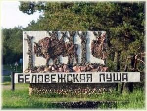 Национальный парк - Беловежская пуща