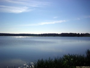 Озеро в г.п. Новоельня