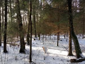 Снег это странный предмет, вот он есть и вот его нет, а вот опять есть...